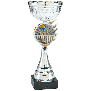 Trofee Kari volleybal