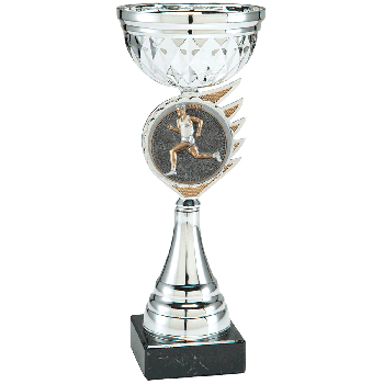 Trofee Kari hardlopen heren