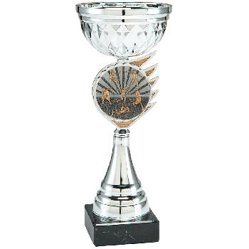 Trofee Kari atletiek