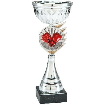 Trofee Kari boksen