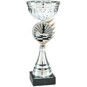 Trofee Kari schaken