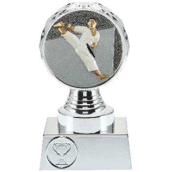 Trofee Vesta karate