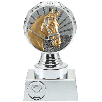 Trofee Vesta paardensport