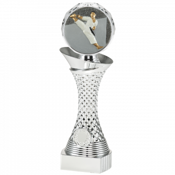 Trofee Leif karate