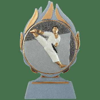 Vlammen trofee karate