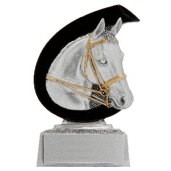 Beeld Liz paardensport