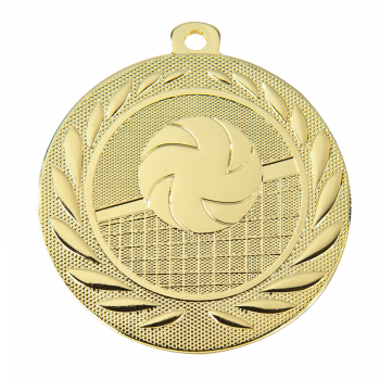 Medaille London volleybal