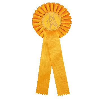 Rozet geel paardensport