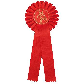 Rozet rood paardensport