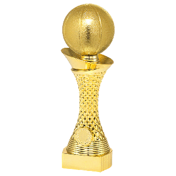 Trofee Nico basketbal