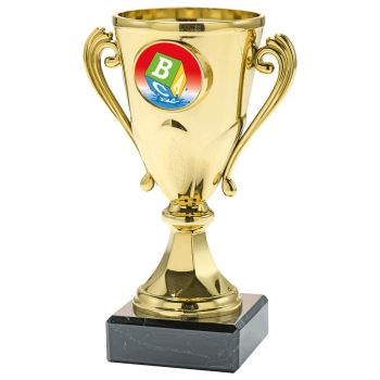 Zwemdiploma B trofee