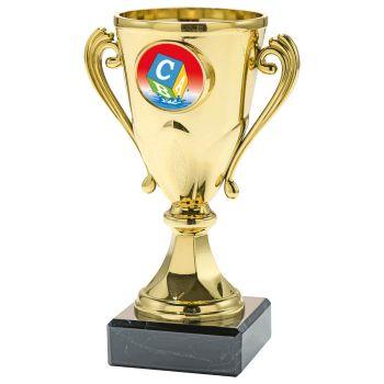 Zwemdiploma C trofee